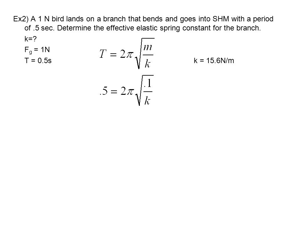 Ex2) A 1 N bird lands on a branch that bends and goes into SHM with a period of .5 sec. Determine the effective elastic spring constant for the branch.