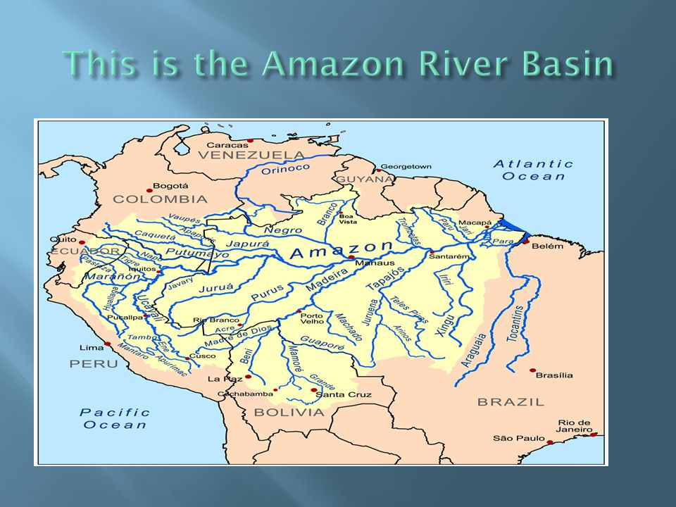 This is the Amazon River Basin
