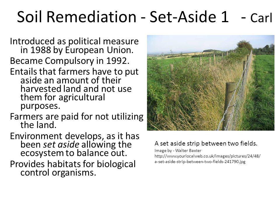 Soil Remediation - Set-Aside 1 - Carl
