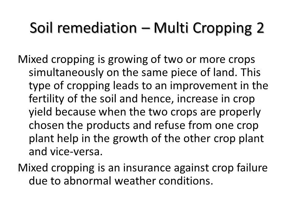 Soil remediation – Multi Cropping 2