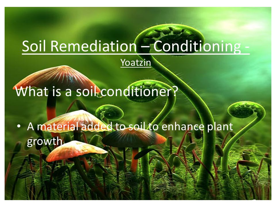 What is a soil conditioner