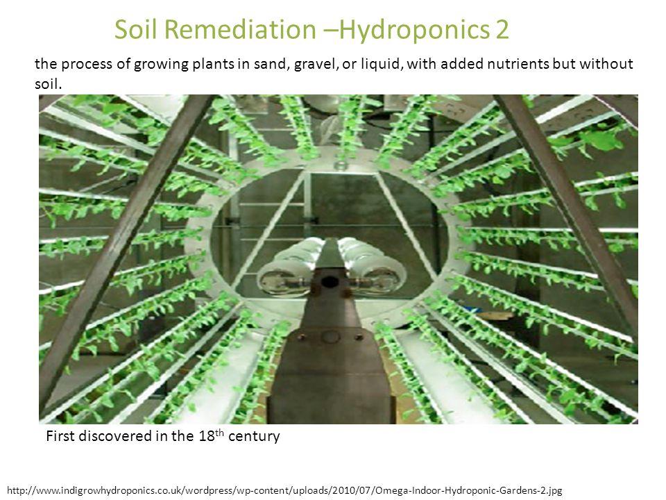 Soil Remediation –Hydroponics 2