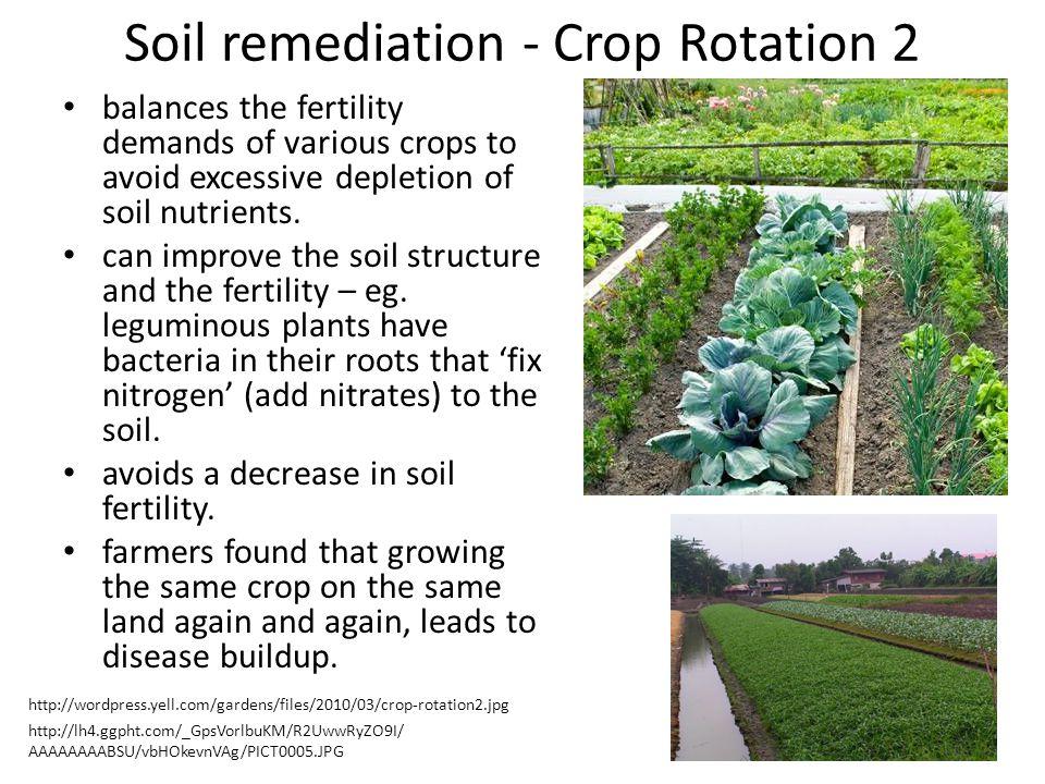 Soil remediation - Crop Rotation 2