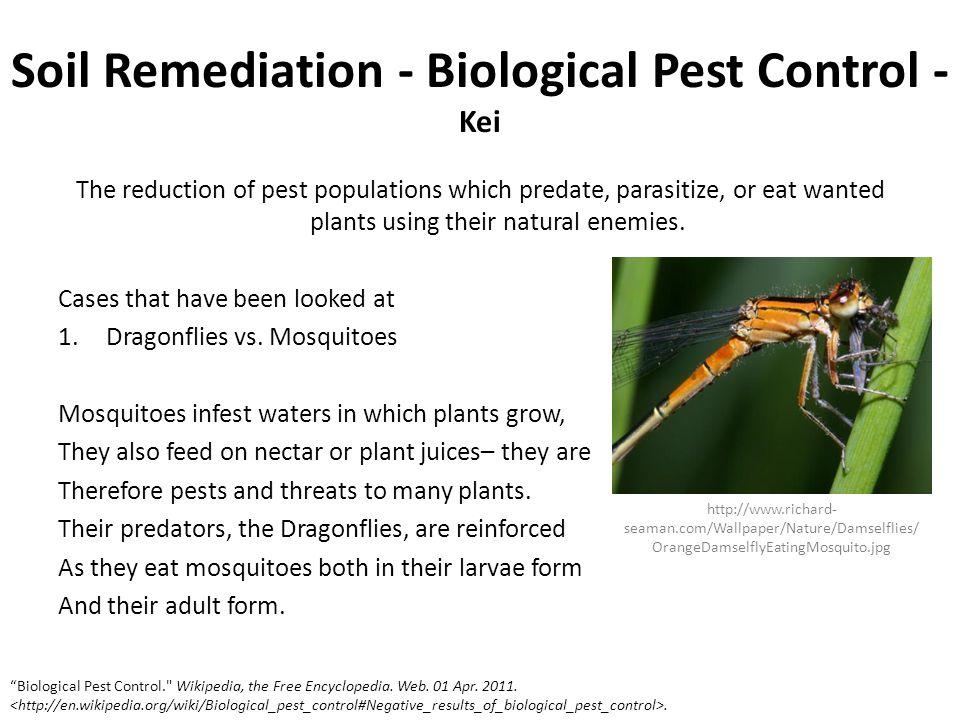Soil Remediation - Biological Pest Control - Kei