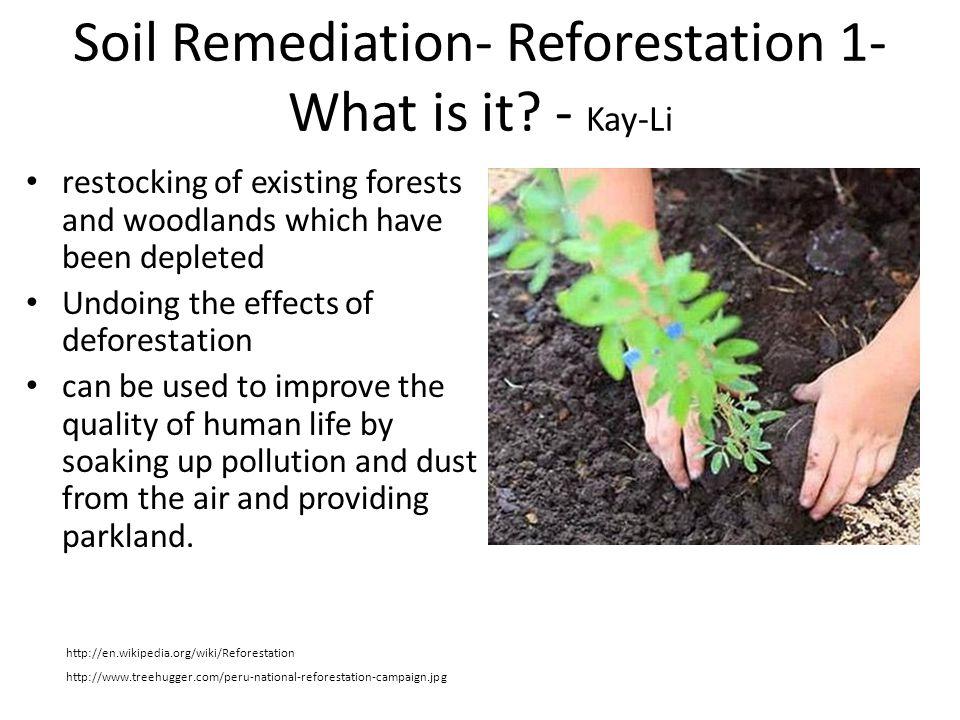 Soil Remediation- Reforestation 1- What is it - Kay-Li