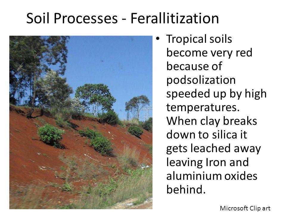 Soil Processes - Ferallitization
