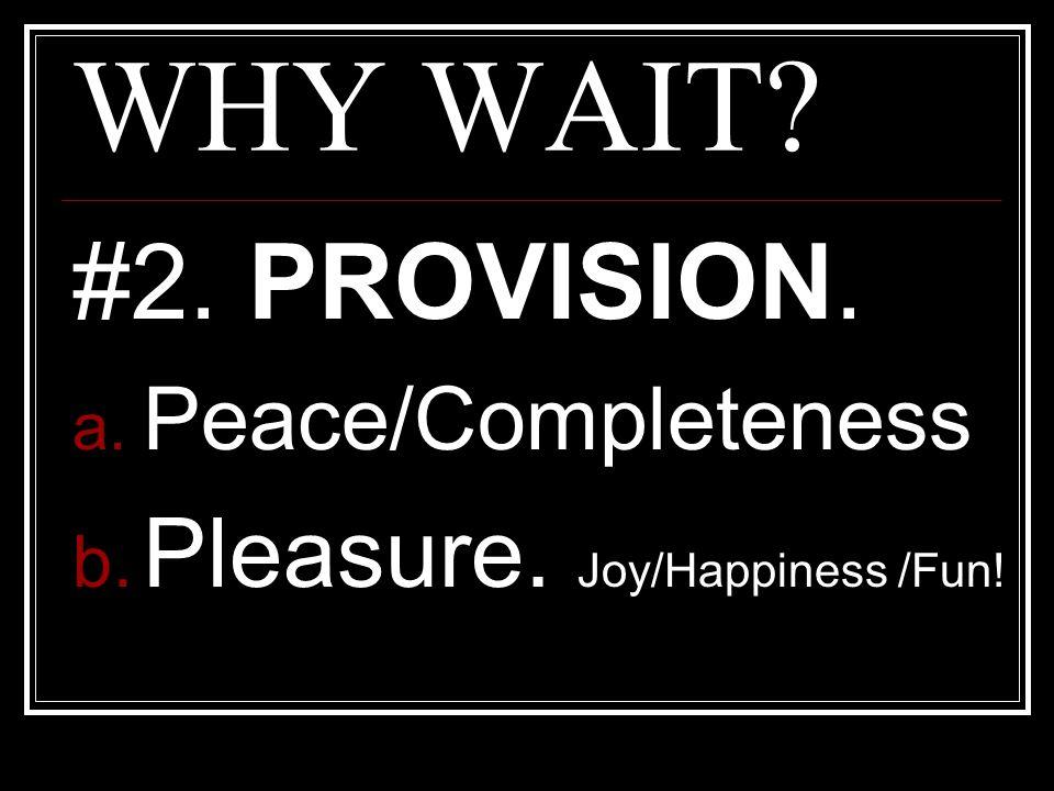 WHY WAIT #2. PROVISION. Pleasure. Joy/Happiness /Fun!