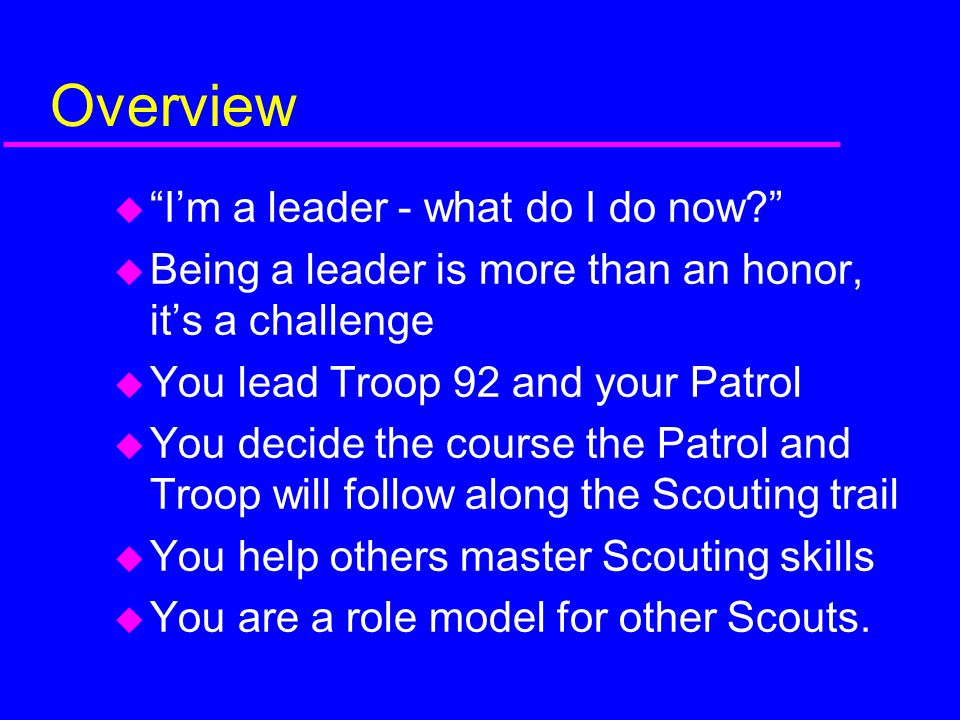 Overview I'm a leader - what do I do now