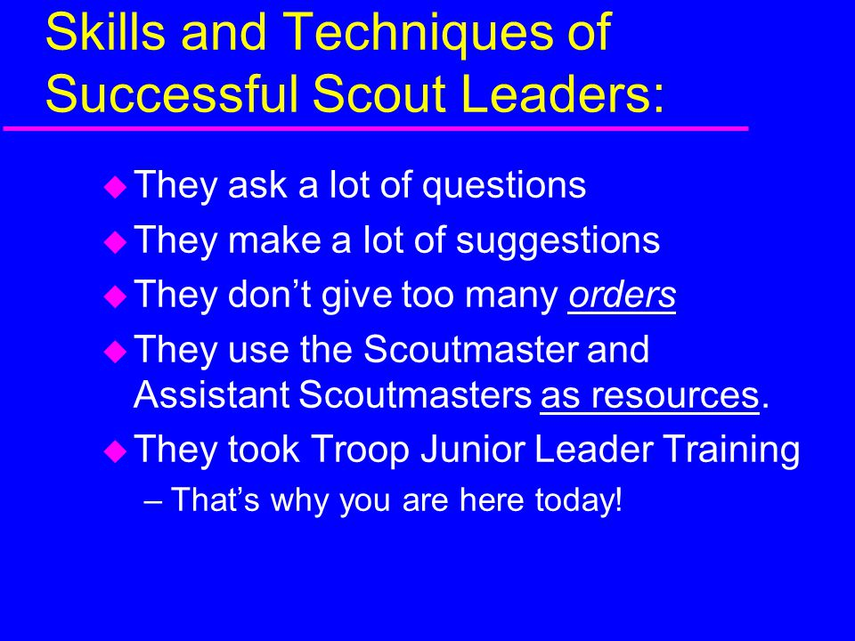 Skills and Techniques of Successful Scout Leaders: