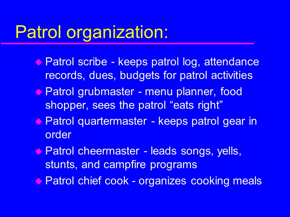 Patrol organization: Patrol scribe - keeps patrol log, attendance records, dues, budgets for patrol activities.