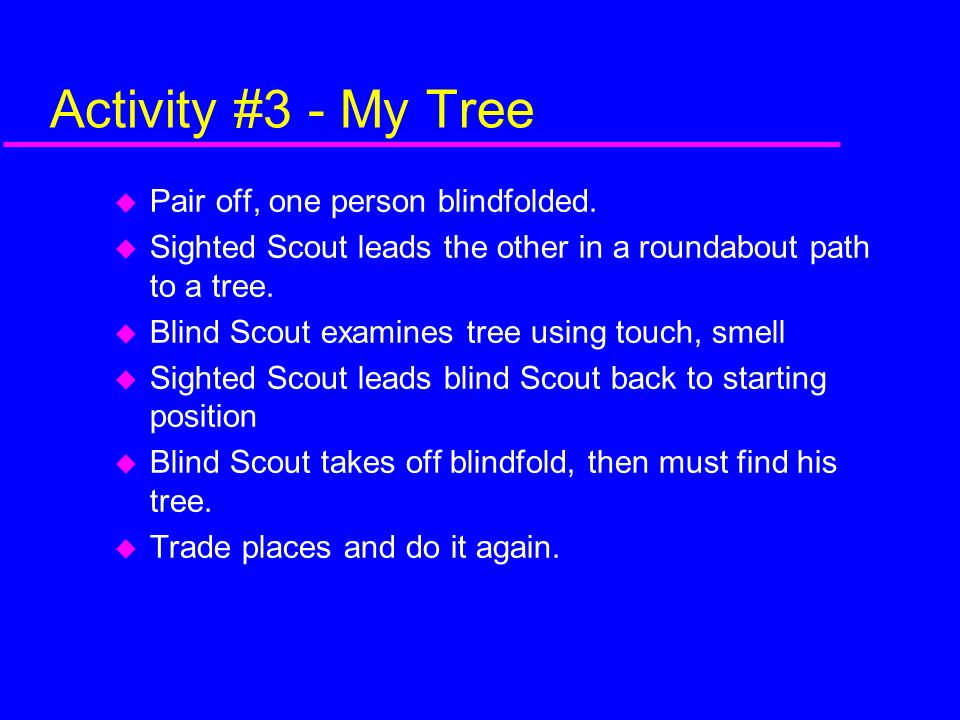 Activity #3 - My Tree Pair off, one person blindfolded.