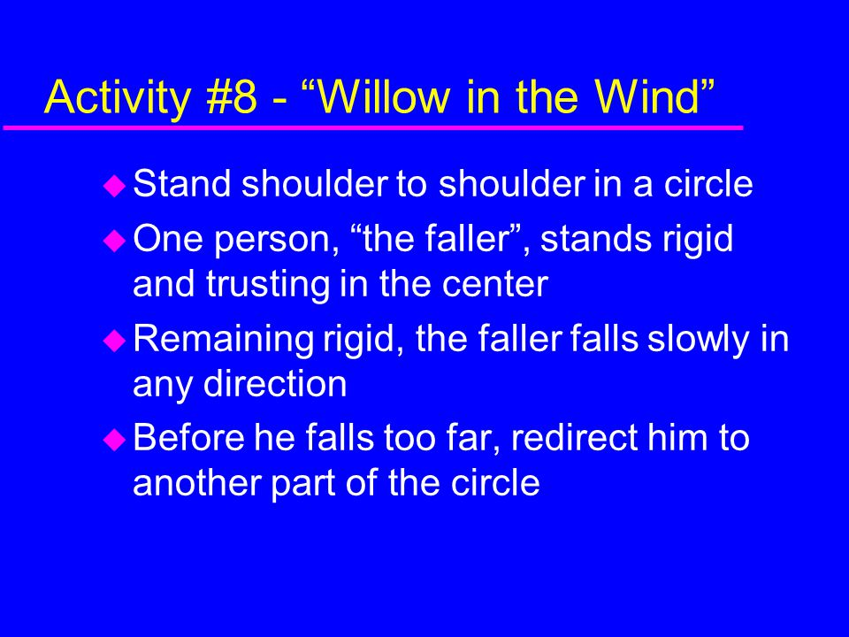 Activity #8 - Willow in the Wind
