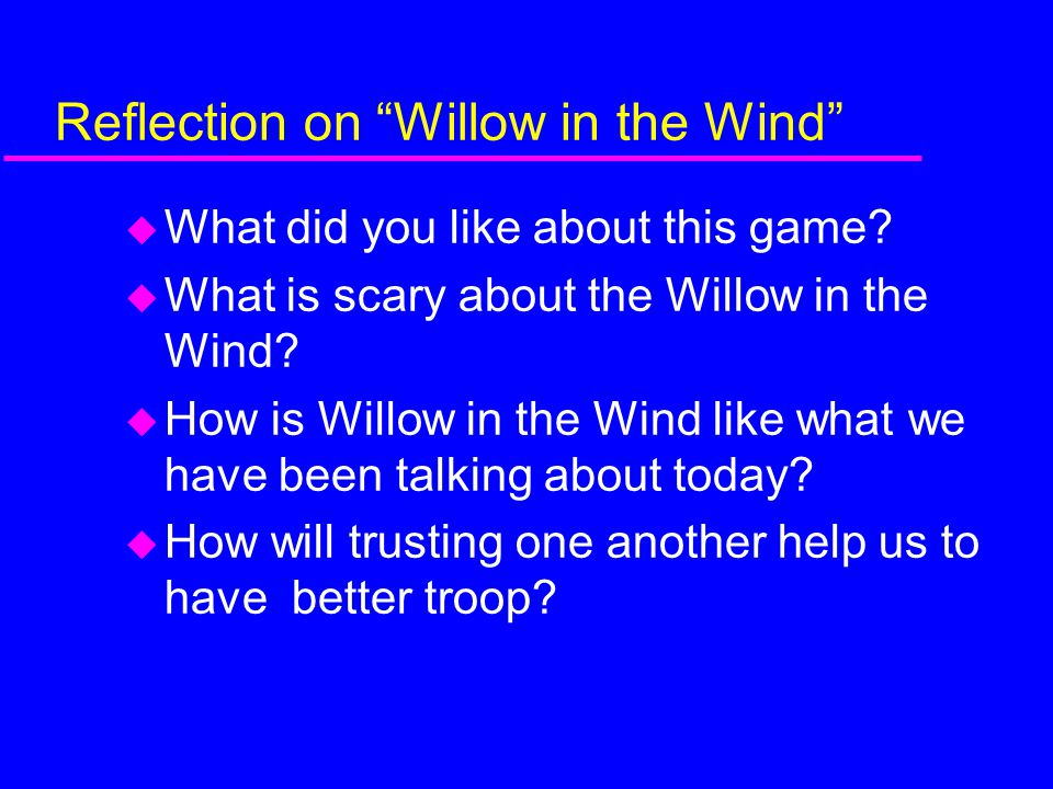 Reflection on Willow in the Wind