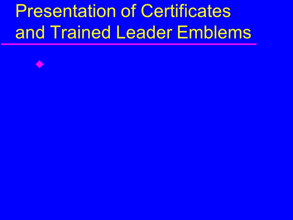 Presentation of Certificates and Trained Leader Emblems