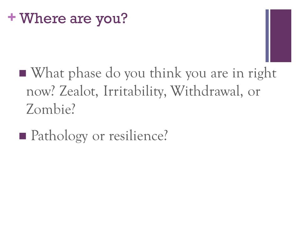 Where are you What phase do you think you are in right now Zealot, Irritability, Withdrawal, or Zombie
