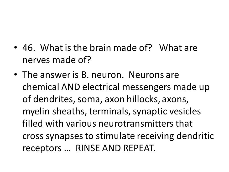 46. What is the brain made of What are nerves made of