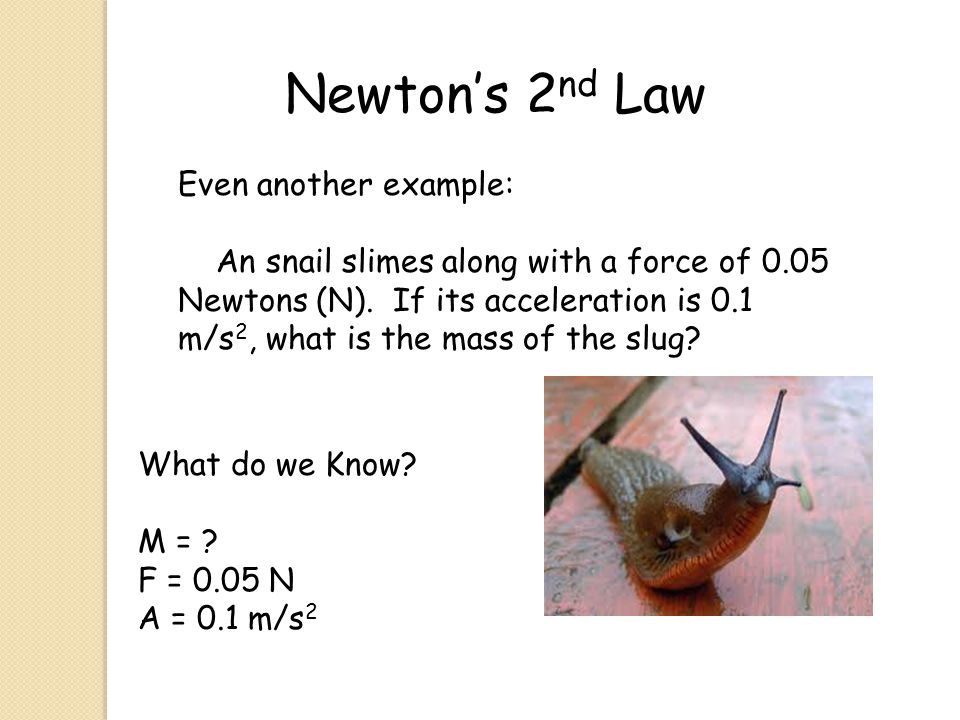 Newton's 2nd Law Even another example: