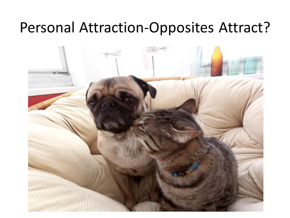 Personal Attraction-Opposites Attract