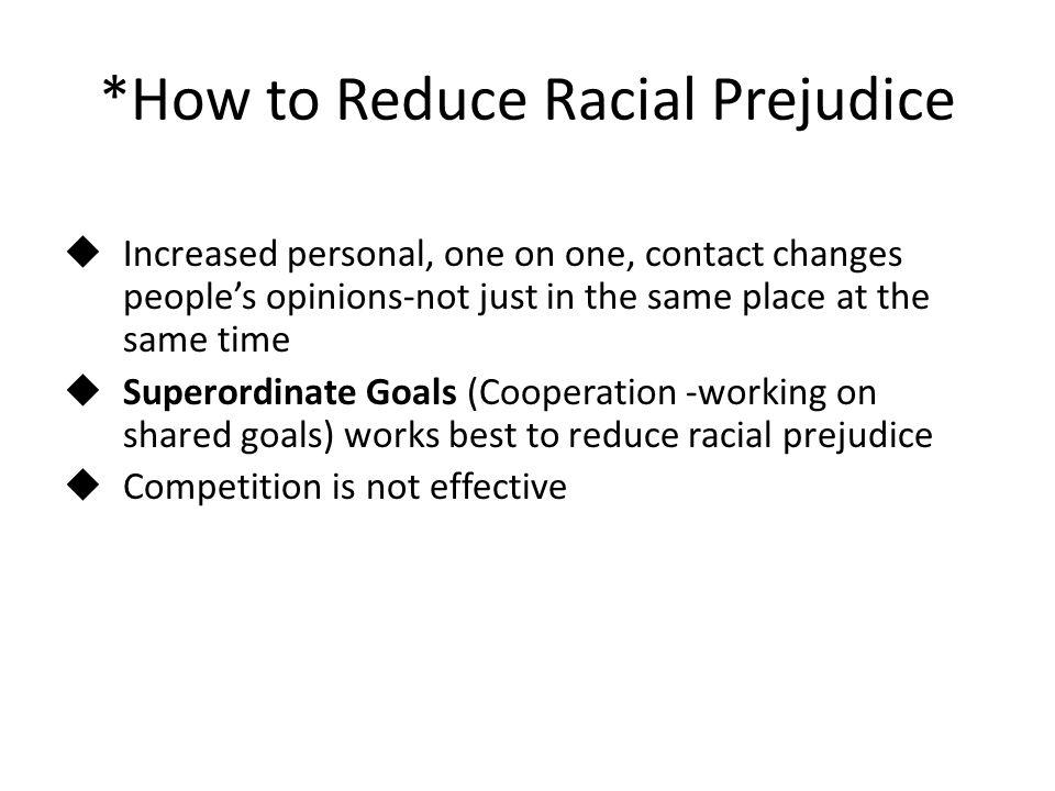 *How to Reduce Racial Prejudice