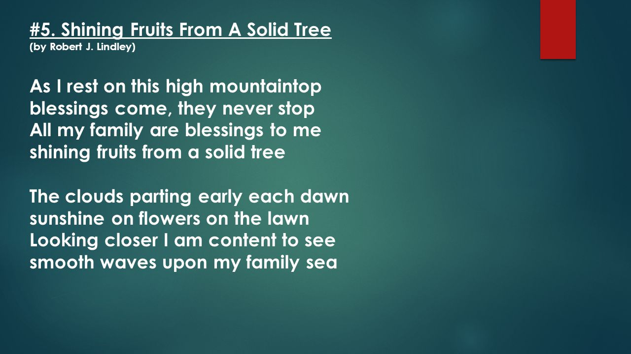 #5. Shining Fruits From A Solid Tree