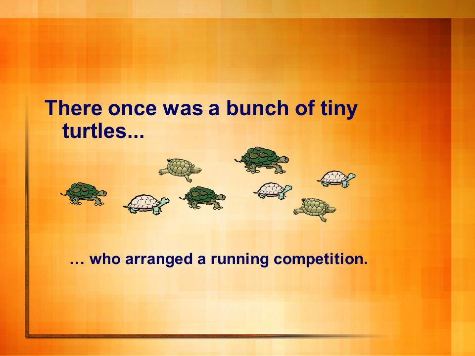 There once was a bunch of tiny turtles...