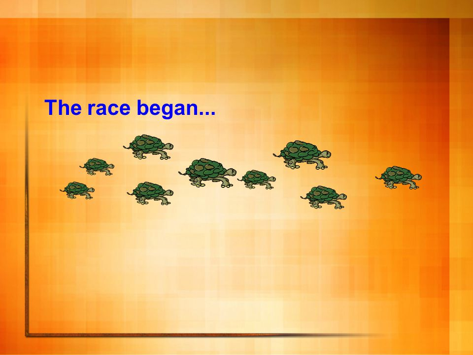 The race began...
