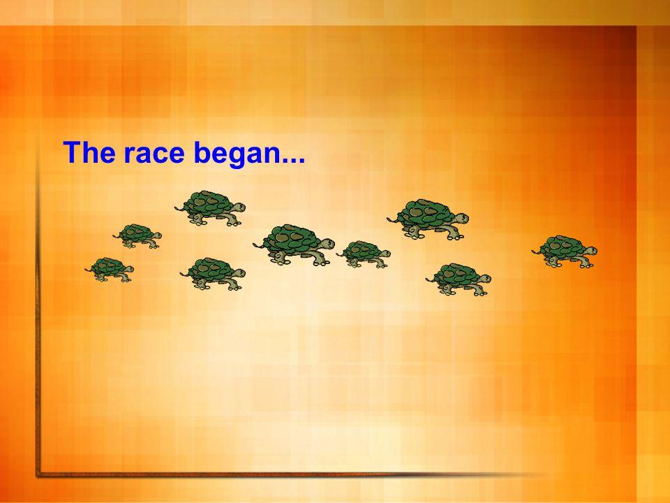 The race began...