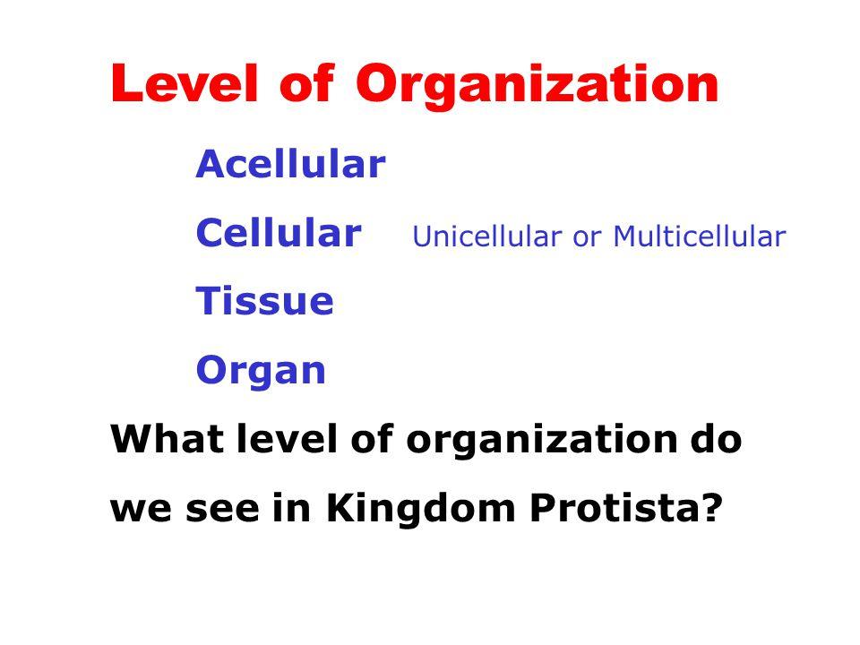 Level of Organization Acellular Cellular Unicellular or Multicellular