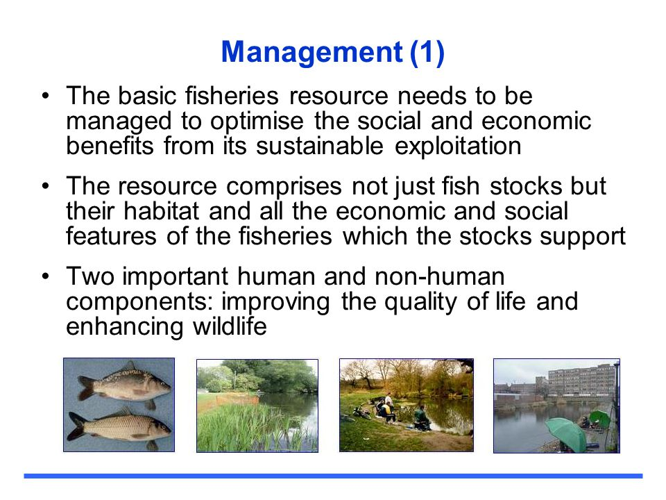 Management (1) The basic fisheries resource needs to be managed to optimise the social and economic benefits from its sustainable exploitation.