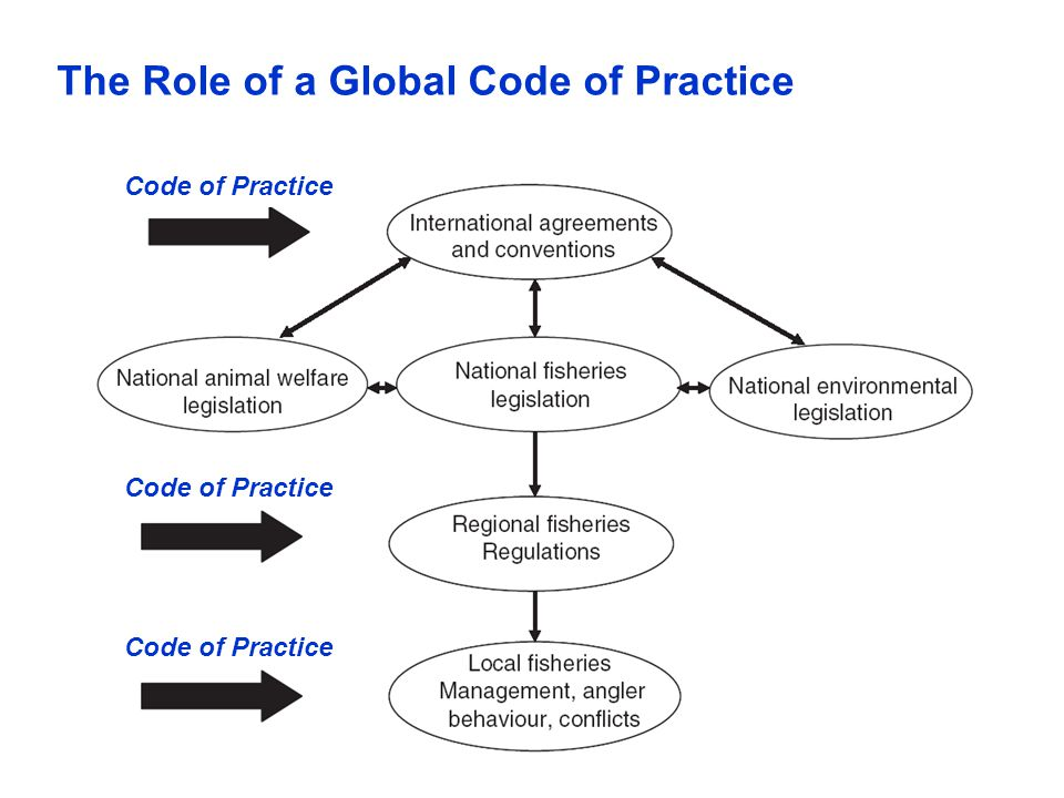 The Role of a Global Code of Practice
