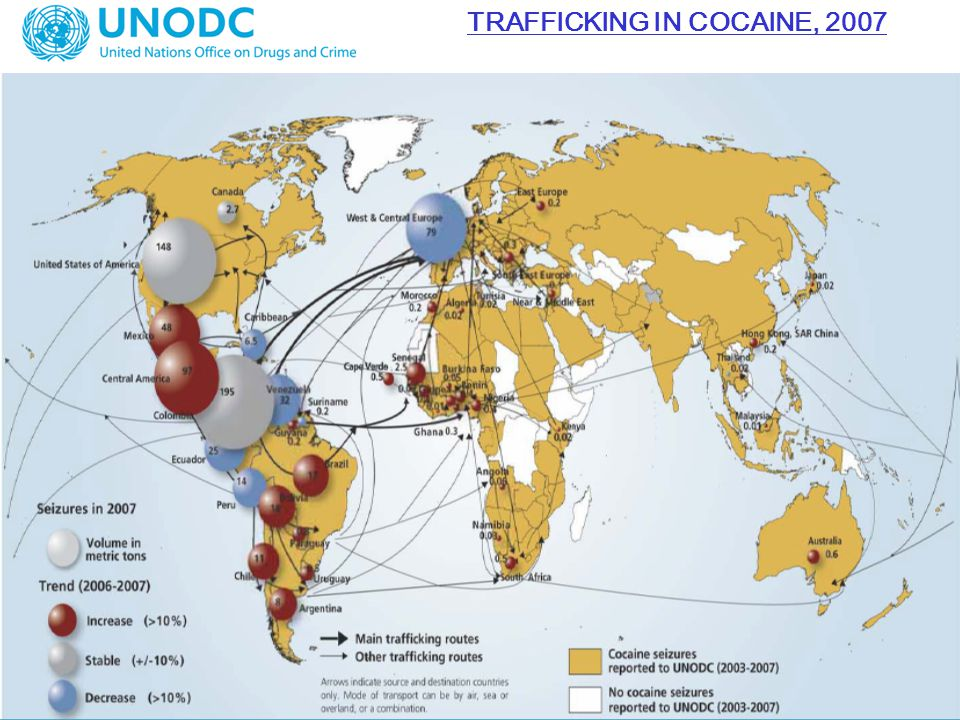 TRAFFICKING IN COCAINE, 2007