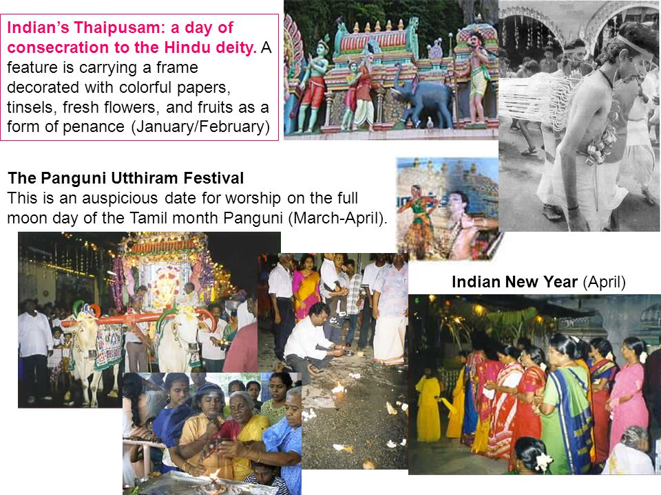 Indian's Thaipusam: a day of consecration to the Hindu deity