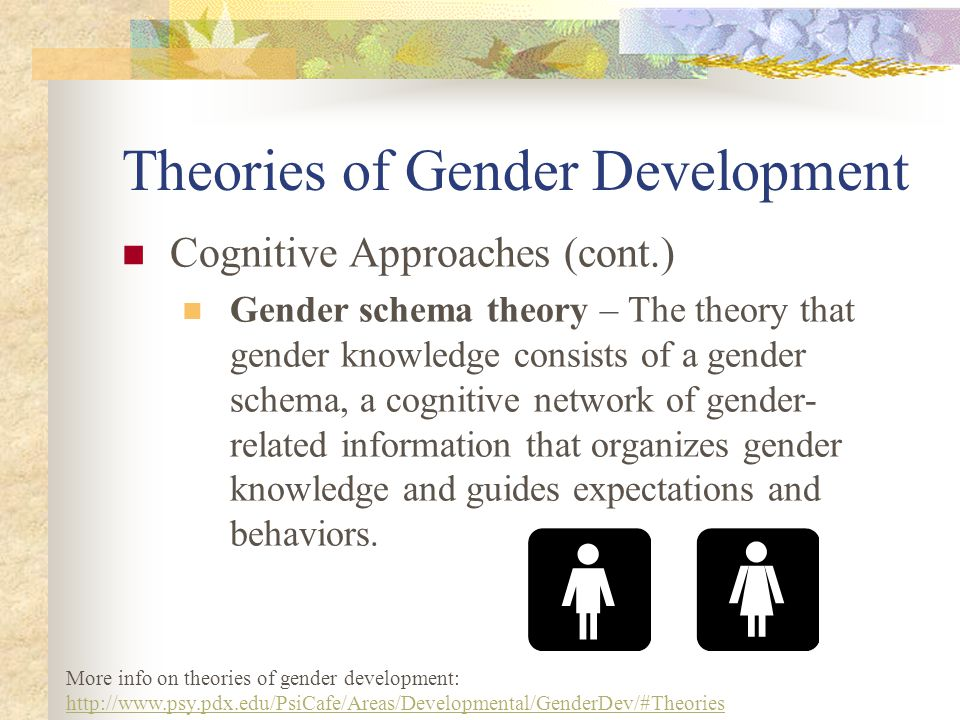 Theories of Gender Development