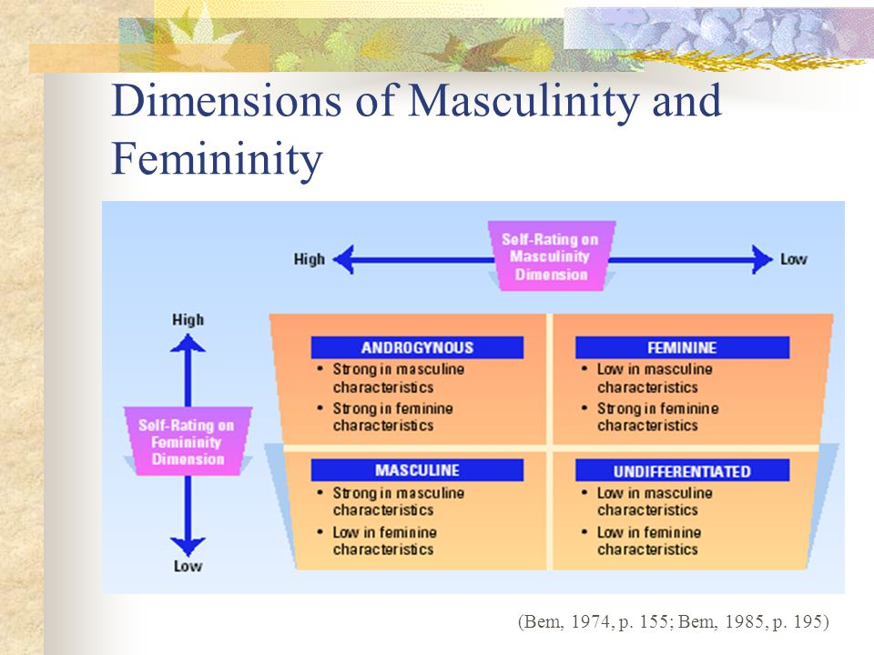 Dimensions of Masculinity and Femininity