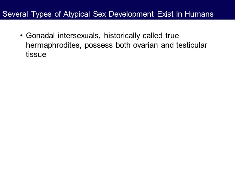 Several Types of Atypical Sex Development Exist in Humans