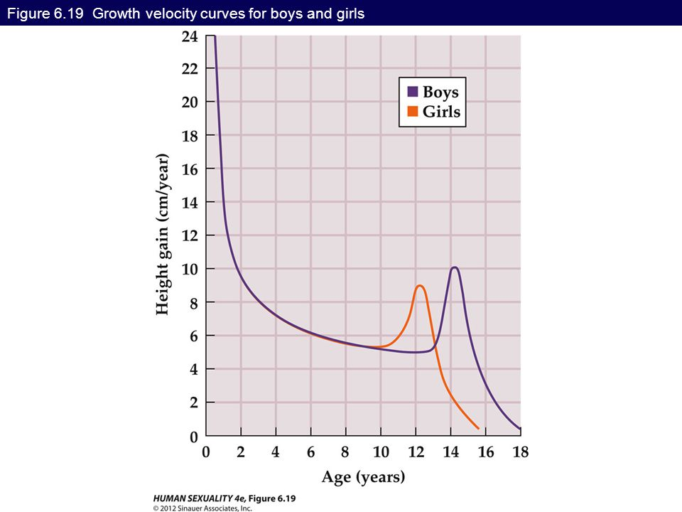 Figure 6.19 Growth velocity curves for boys and girls