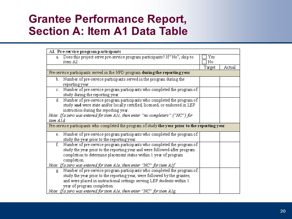 Grantee Performance Report, Section A: Item A1 Data Table