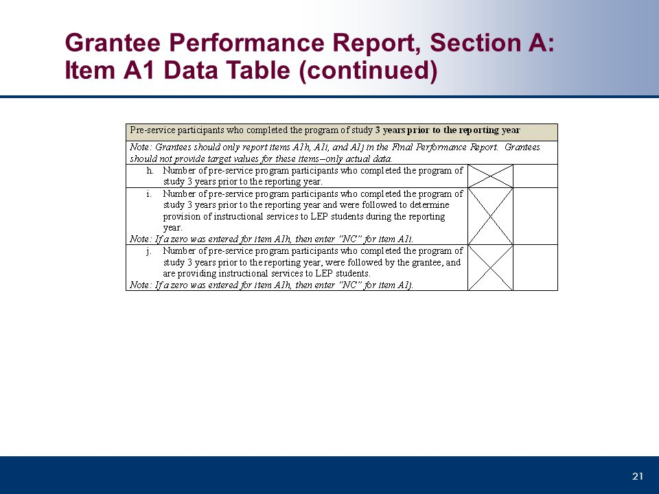 Grantee Performance Report, Section A: Item A1 Data Table (continued)