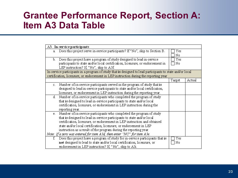 Grantee Performance Report, Section A: Item A3 Data Table