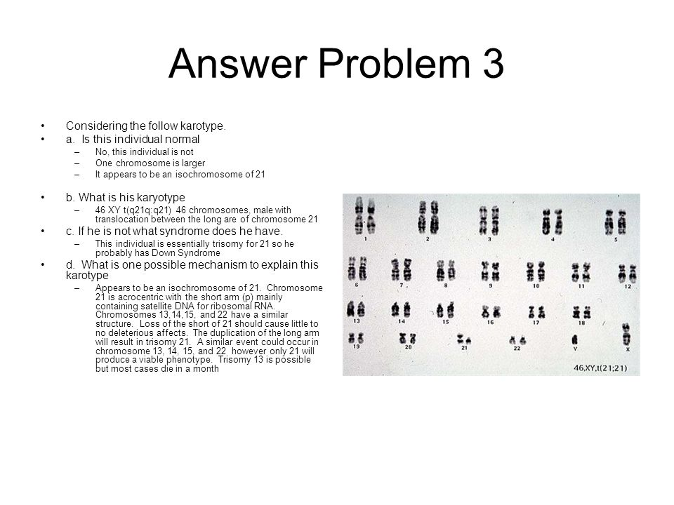 Answer Problem 3 Considering the follow karotype.