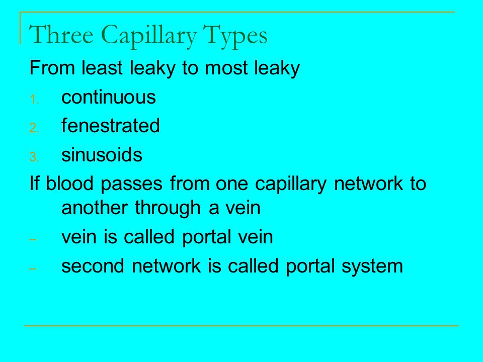 Three Capillary Types From least leaky to most leaky continuous