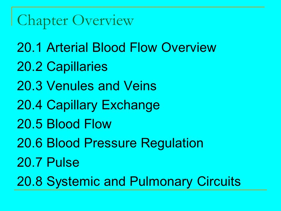 Chapter Overview 20.1 Arterial Blood Flow Overview 20.2 Capillaries