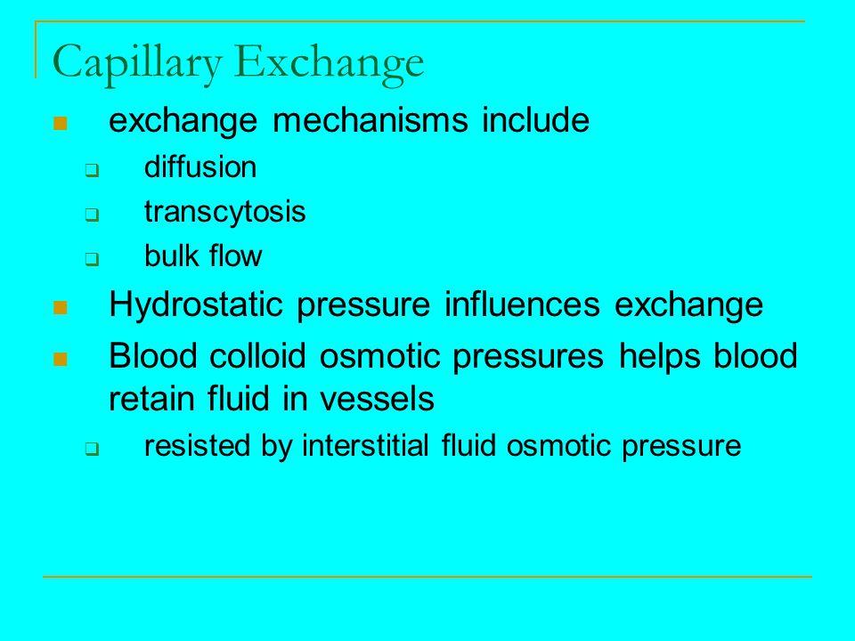 Capillary Exchange exchange mechanisms include