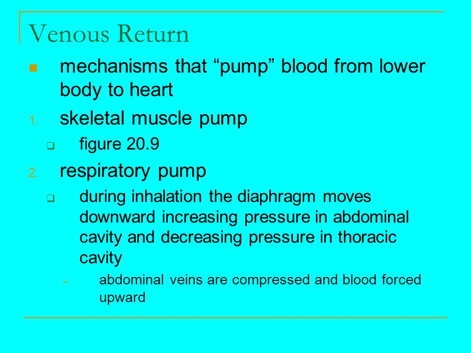 Venous Return mechanisms that pump blood from lower body to heart