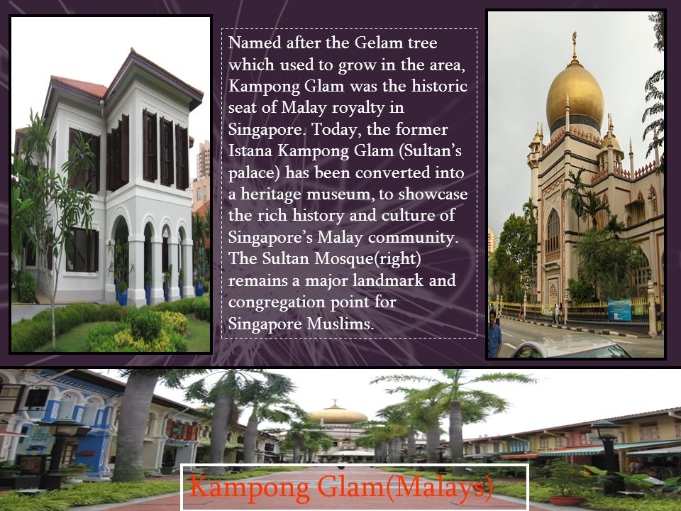 Named after the Gelam tree which used to grow in the area, Kampong Glam was the historic seat of Malay royalty in Singapore. Today, the former Istana Kampong Glam (Sultan's palace) has been converted into a heritage museum, to showcase the rich history and culture of Singapore's Malay community. The Sultan Mosque(right) remains a major landmark and congregation point for Singapore Muslims.