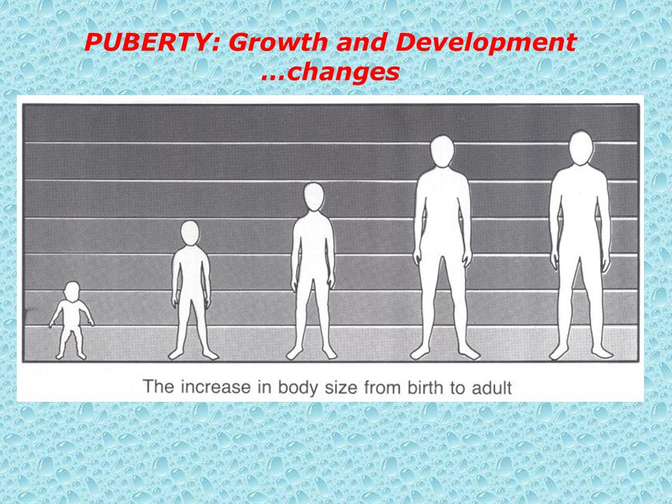 PUBERTY: Growth and Development …changes