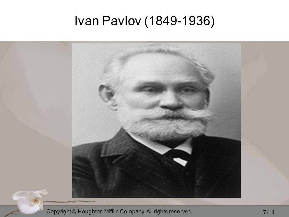 Ivan Pavlov (1849-1936) Copyright © Houghton Mifflin Company. All rights reserved.