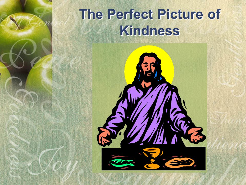 The Perfect Picture of Kindness