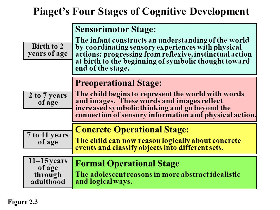 piaget s preoperational stage Preoperational stage concrete operational stage  the piaget stages of development is a blueprint that describes the stages of normal intellectual development, from infancy through adulthood .