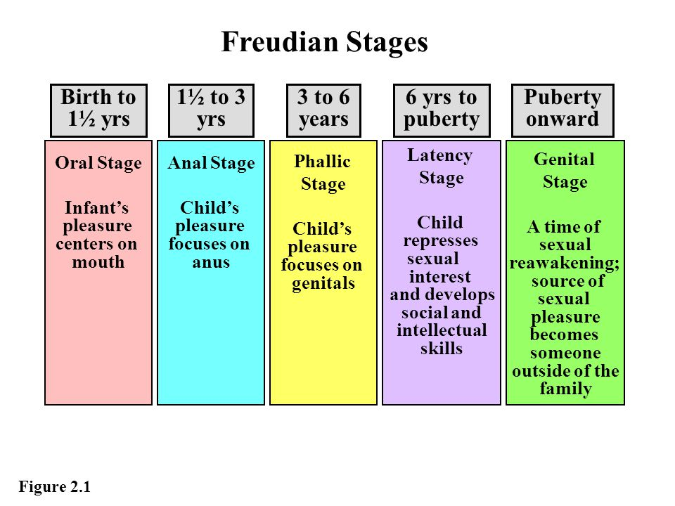 Freudian Stages Birth to 1½ yrs 1½ to 3 yrs 3 to 6 years